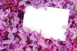 Lilac flowers with white card