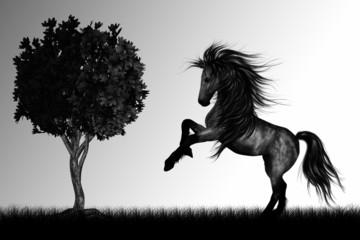 wild horse and tree