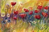 Fototapeta łąka - natura - Kwiat