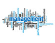 MANAGEMENT Tag Cloud (team staff manager quality administration)