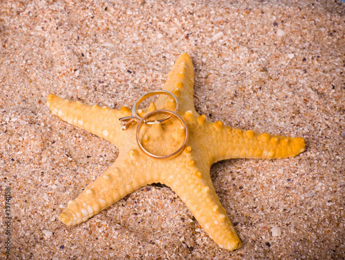 Beautiful exotic starfish with two worn golden rings