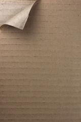 Fondo de cartón rasgado