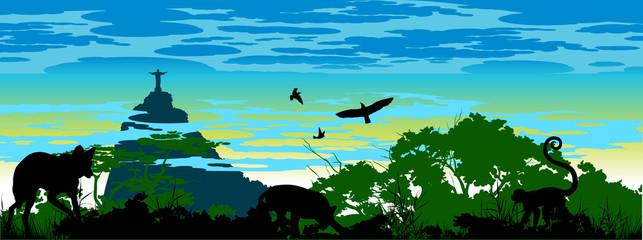 Wild jungle animals in Brazil