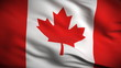 Canadian Flag HD. Looped.