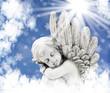 Engel wärmt sich in der Sonne