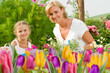 Spring garden - girl helping mother in flowers garden
