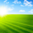 Beautiful landscape with green field and sun