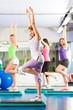 Fitness - Training und Workout im Fitnessstudio