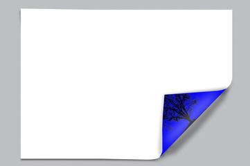 Blatt Papier, Umweltschutz