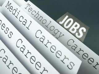 Job and education careers