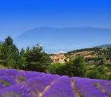 Fototapety aurel en provence