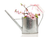 Mothers Day Watering Can