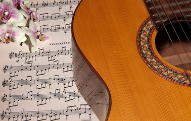 Guitar with notes and orchid