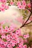 Fototapete Blume - Rosa - Blume