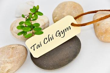Tai Chi Gym