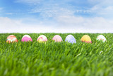 Easter eggs on green field