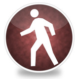 pedestrian crossing icon