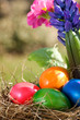 Colorful easter eggs lying in a nest