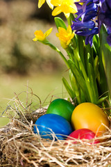Colorful easter eggs outdoor