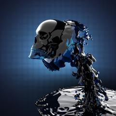 skull in liquid