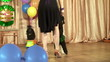 performance of trained circus dogs