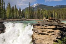 Tombe dans la rivière de montagne robuste dans les Rocheuses canadiennes