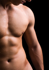 torso of young muscular man, isolated on black background