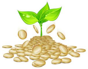 plants & coins