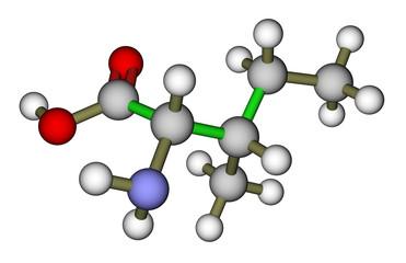 Essential amino acid isoleucine molecular structure