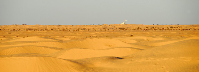 sahara occidental sud tunisien panoramique