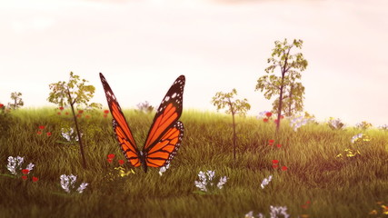 Follow the butterfly