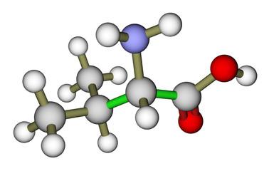 Essential amino acid valine molecular structure