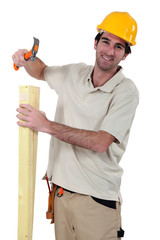 Carpenter with a hammer