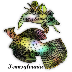 pennsylvania state bird