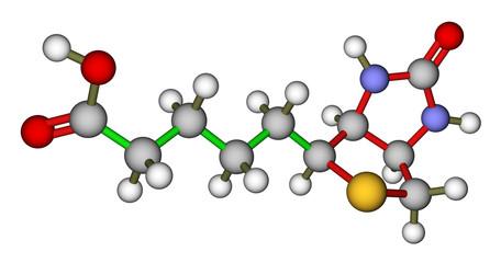 Biotin (vitamin H or B7) molecular structure