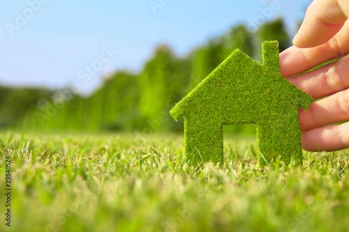 ręka trzyma eco dom ikona w przyrodzie