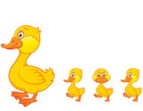 Duck family cartoon isolated