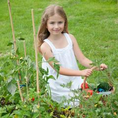 Gardening, lovely gardener in vegetables garden