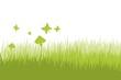 Frühling - Grüne Wiese - Natur