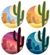 Mexican Desert - 39873575