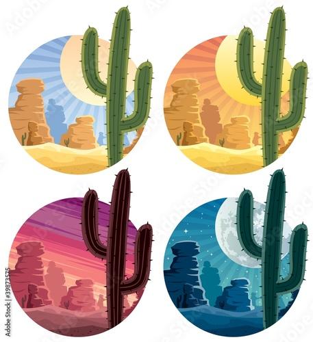 Mexican Desert