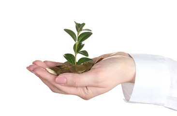 Woman hand with coins and plant isolated on white
