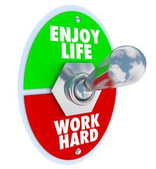 Enjoy Life vs. Work Hard Balance Toggle Switch