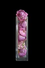 Сухие бутоны роз в стеклянной вазе, изолированные на черном фоне