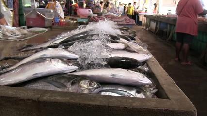marché aux poissons thailande