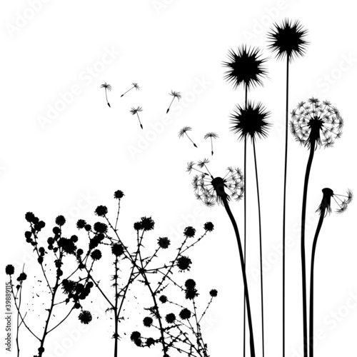 collection, for designers, plant vector - 39889115