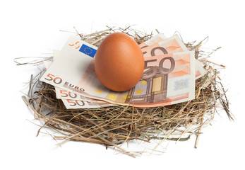 Money and brown egg in nest
