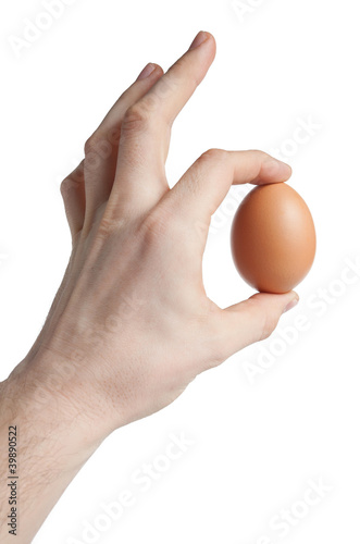 Brown egg in hand isolated on white