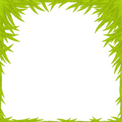 Green Leaf Background, space for text