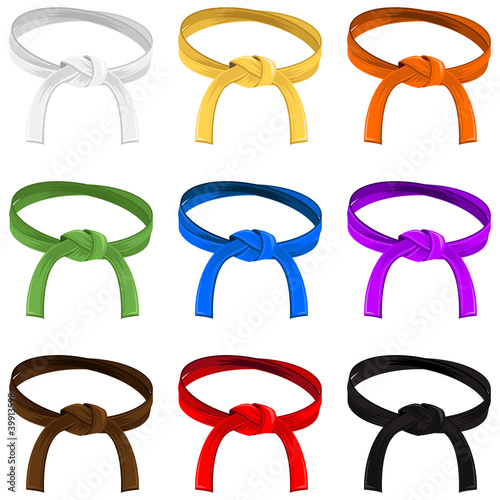 Fototapeta Martial Art Belt Rank System
